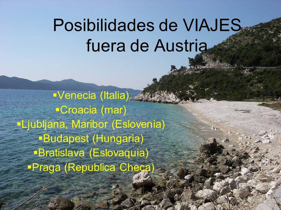 Posibilidades de VIAJES fuera de Austria Venecia (Italia) Croacia (mar) Ljubljana, Maribor (Eslovenia) Budapest (Hungarìa) Bratislava (Eslovaquia) Praga (Republica Checa)