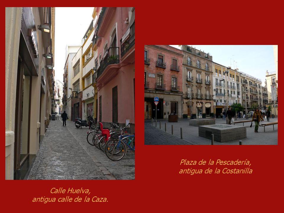 Finalmente, oí decir a un hombre discreto, que tres cosas tenía el rey por ganar en Sevilla: la calle de la Caza, la costanilla y el matadero.