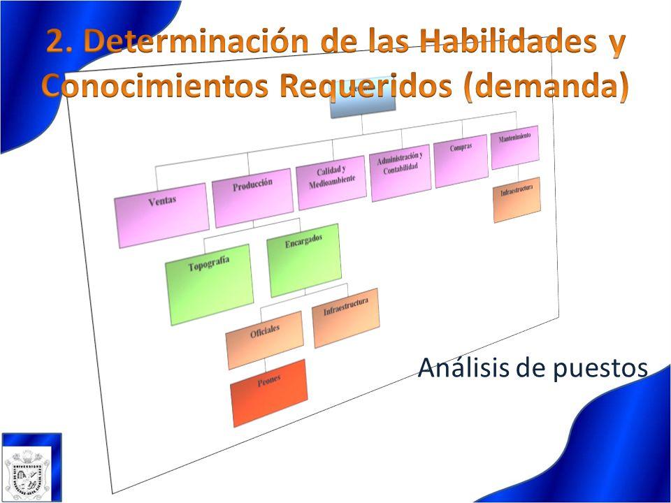 Deben ser analizadas de acuerdo a los recursos humanos actuales y previstos de la organización.