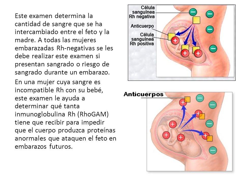 Este examen determina la cantidad de sangre que se ha intercambiado entre el feto y la madre. A todas las mujeres embarazadas Rh-negativas se les debe