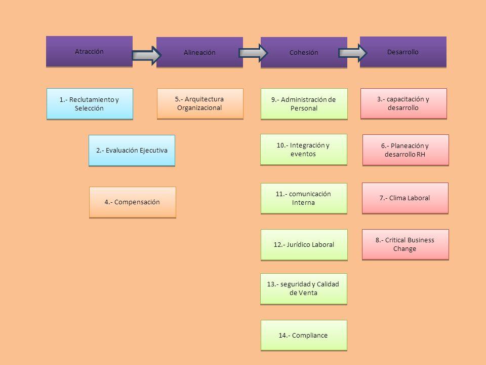 Atracción Alineación Cohesión Desarrollo 1.- Reclutamiento y Selección 5.- Arquitectura Organizacional 2.- Evaluación Ejecutiva 4.- Compensación 9.- A