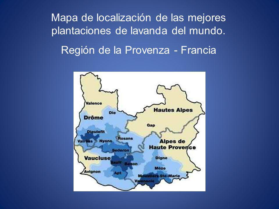 Mapa de localización de las mejores plantaciones de lavanda del mundo. Región de la Provenza - Francia