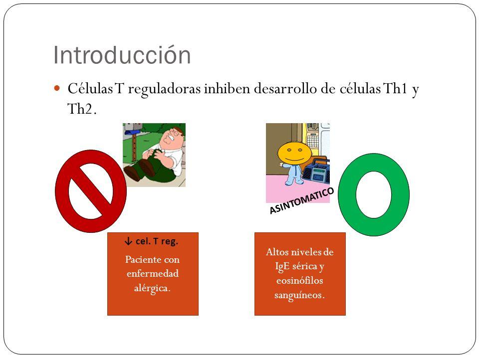 Puntos importantes Las células T reg podrían suprimir el desarrollo de reacciones alérgicas mediante la regulación de otros tipos de células inmunitarias además de las células Th1 y Th2.