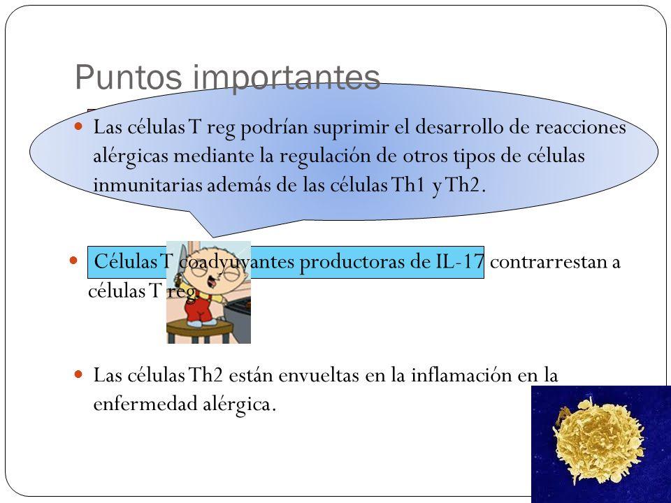 José Antonio Varela Guízar EL PARADIGMA TEÓRICO Th1/Th2 PARA REACCIONES ALÉRGICAS VA EN AUMENTO.