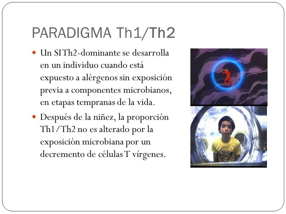 Th2 ROL DE CÉLULAS aTreg EN EL INICIO DE ENFERMEDADES ALÉRGICAS aT reg Th17 ATOPIA iT reg ATOPIA ASINTOMÁTICA ACTIVACIÓN DE MASTOCITOS (TNFa), BASÓFILOS, ÉTC.