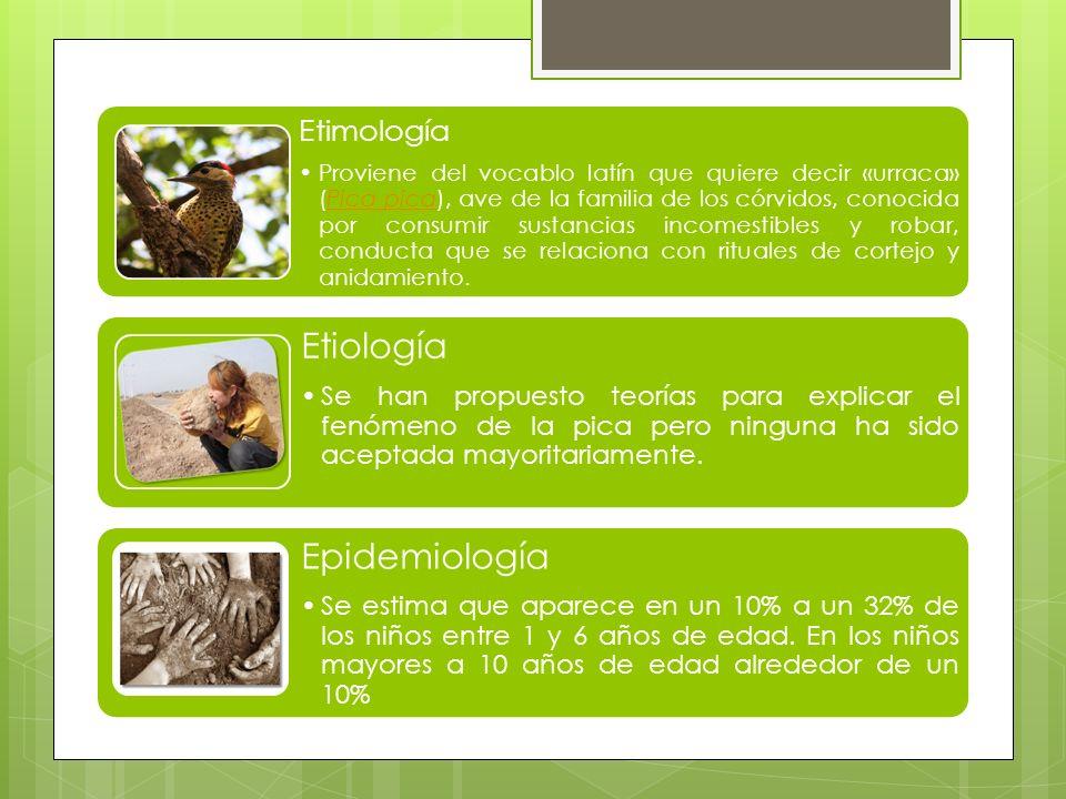 Etimología Proviene del vocablo latín que quiere decir «urraca» (Pica pica), ave de la familia de los córvidos, conocida por consumir sustancias incom