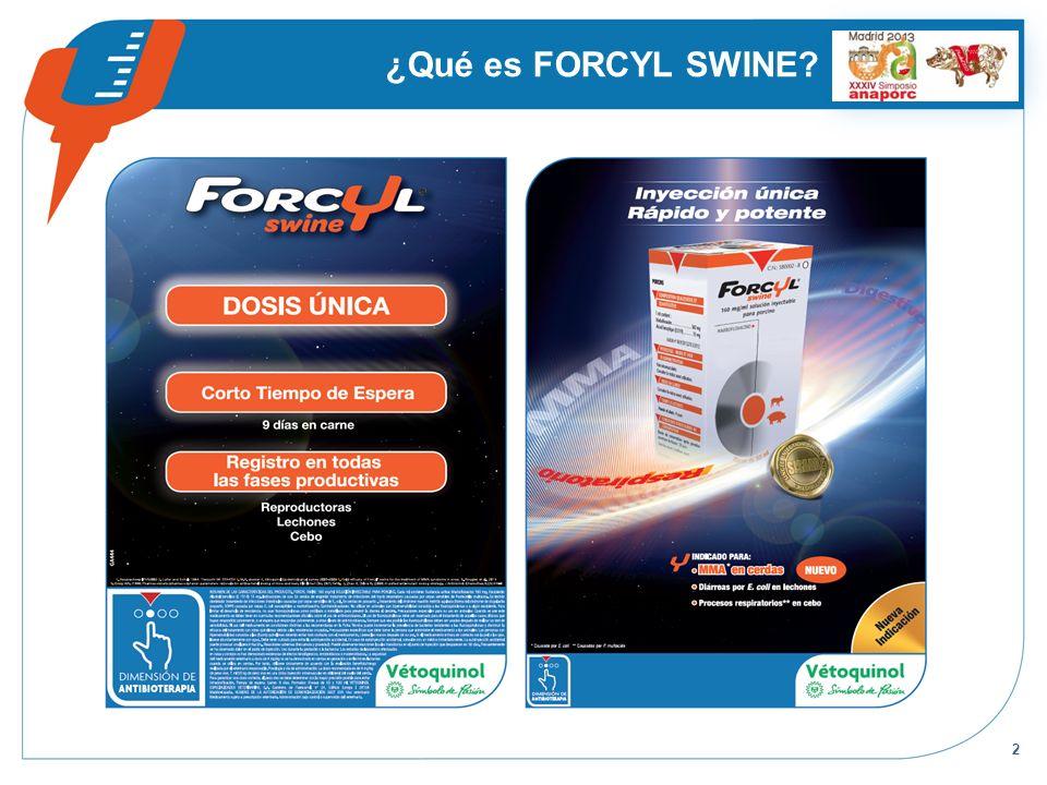 2 ¿Qué es FORCYL SWINE?