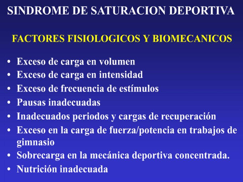 PROFESPORT y UNIVERSIDAD DE ALICANTE I Jornada Técnica para Entrenadores y Monitores Deportivos