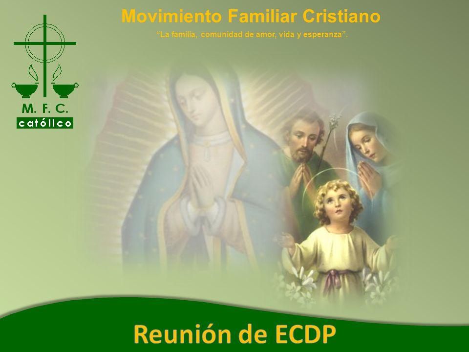 Movimiento Familiar Cristiano La familia, comunidad de amor, vida y esperanza. Actas del Sector