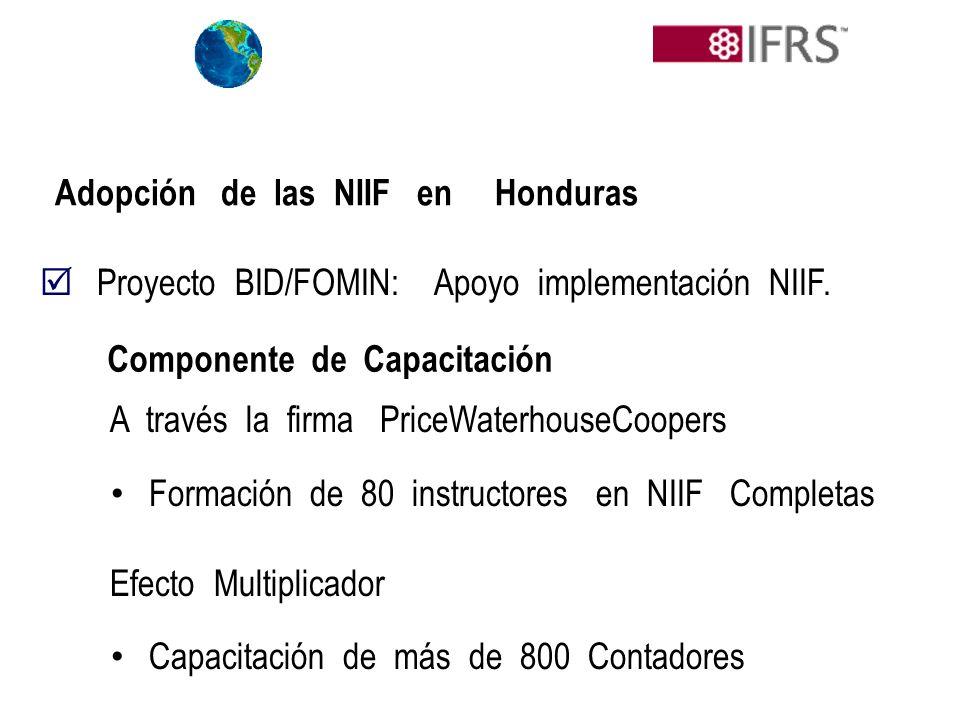 Adopción de las NIIF en Honduras Proyecto BID/FOMIN: Apoyo implementación NIIF. A través la firma PriceWaterhouseCoopers Formación de 80 instructores