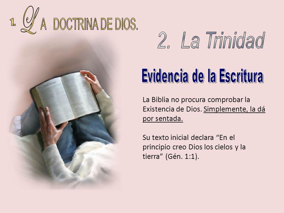 La Biblia no procura comprobar la Existencia de Dios. Simplemente, la dá por sentada. Su texto inicial declara En el principio creo Dios los cielos y