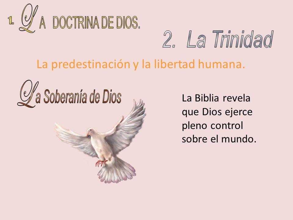 La Biblia revela que Dios ejerce pleno control sobre el mundo. La predestinación y la libertad humana.