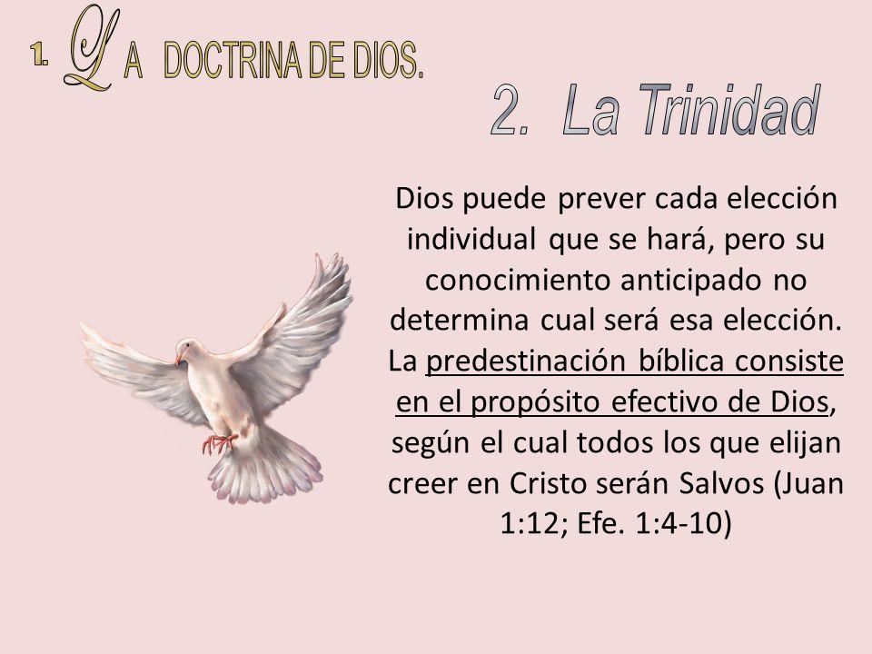 Dios puede prever cada elección individual que se hará, pero su conocimiento anticipado no determina cual será esa elección. La predestinación bíblica