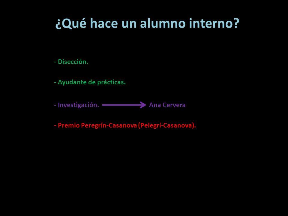 ¿Qué hace un alumno interno? - Disección. - Ayudante de prácticas. - Investigación. - Premio Peregrín-Casanova (Pelegrí-Casanova). Ana Cervera