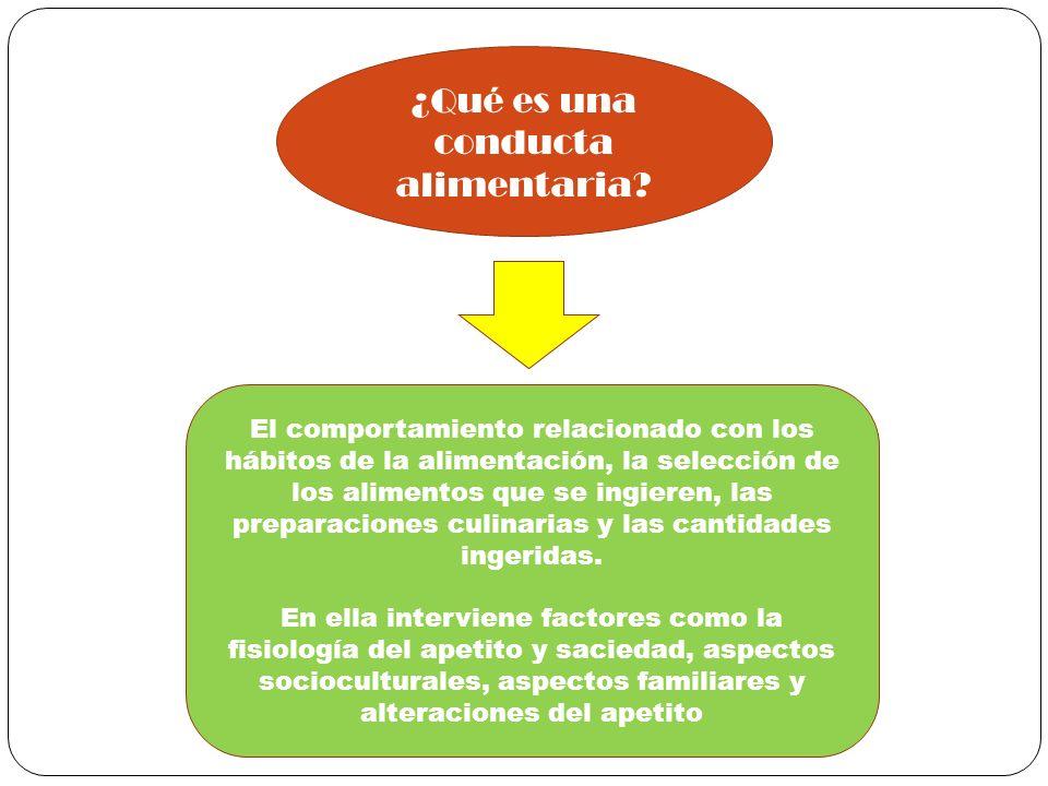 ¿Qué es una conducta alimentaria? El comportamiento relacionado con los hábitos de la alimentación, la selección de los alimentos que se ingieren, las