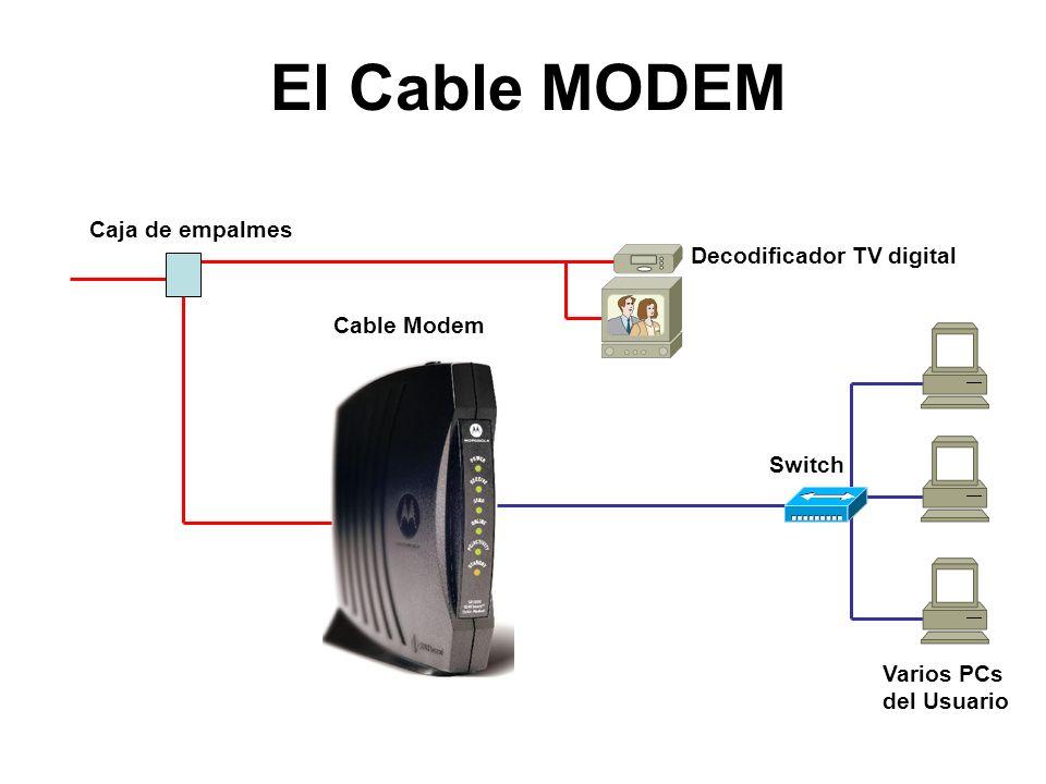 El Cable MODEM Cable Modem Decodificador TV digital Caja de empalmes Switch Varios PCs del Usuario