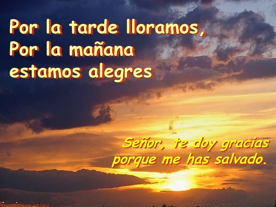 Señor, te doy gracias porque me has salvado.Señor, te doy gracias porque me has salvado.