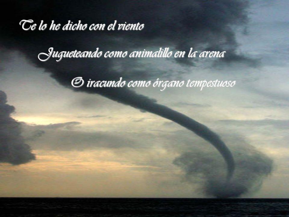 Te lo he dicho con el viento Jugueteando como animalillo en la arena O iracundo como órgano tempestuoso