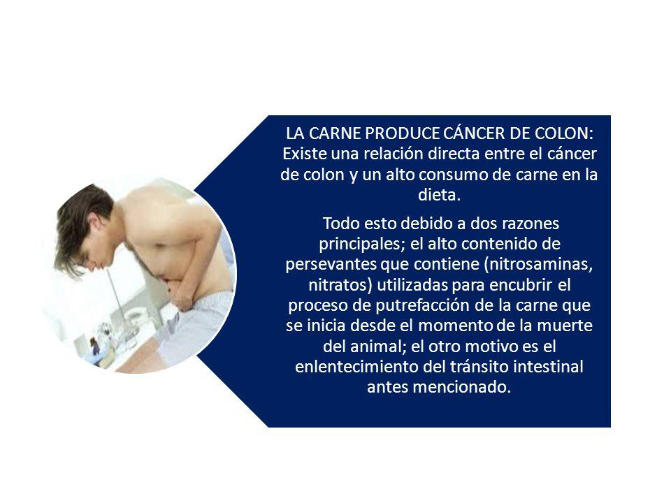 LA CARNE PRODUCE CÁNCER DE COLON: Existe una relación directa entre el cáncer de colon y un alto consumo de carne en la dieta. Todo esto debido a dos