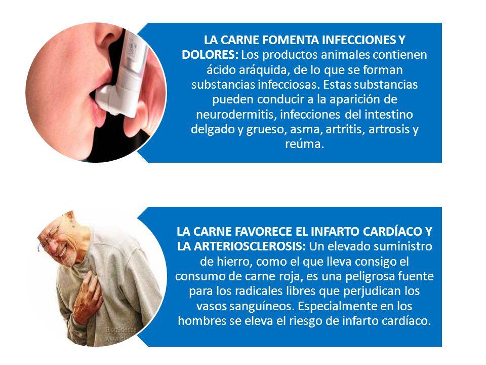 LA CARNE FOMENTA INFECCIONES Y DOLORES: Los productos animales contienen ácido aráquida, de lo que se forman substancias infecciosas.
