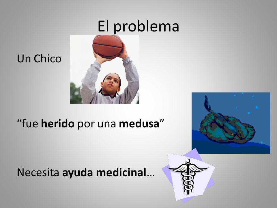 El problema Un Chico fue herido por una medusa Necesita ayuda medicinal…