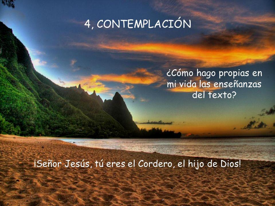 Por tu inmensa piedad, de mi pecado purifícame. Amabilísimo Señor Jesucristo, verdadero Dios, que del seno eterno del Padre omnipotente, tú fuiste env