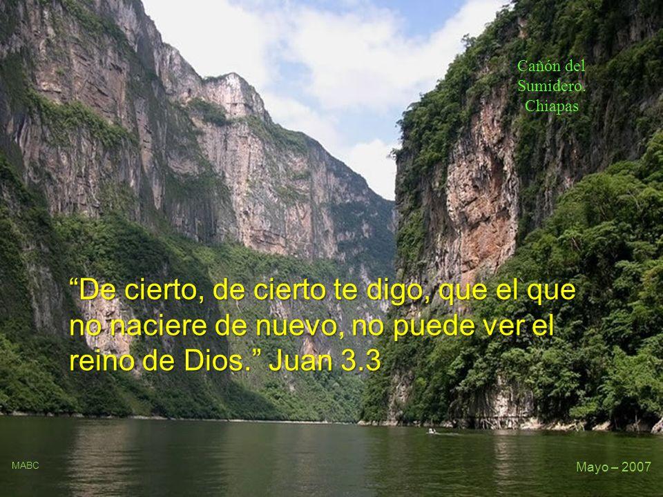 De cierto, de cierto te digo, que el que no naciere de nuevo, no puede ver el reino de Dios.
