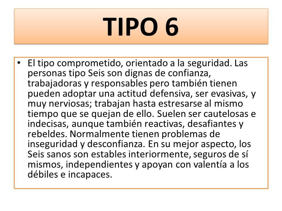 TIPO 6 El tipo comprometido, orientado a la seguridad.