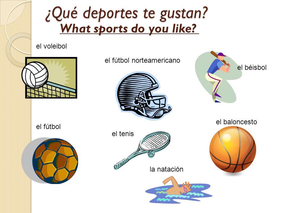 ¿Qué deportes te gustan? el voleibol el fútbol norteamericano el béisbol el fútbol el tenis el baloncesto la natación What sports do you like?