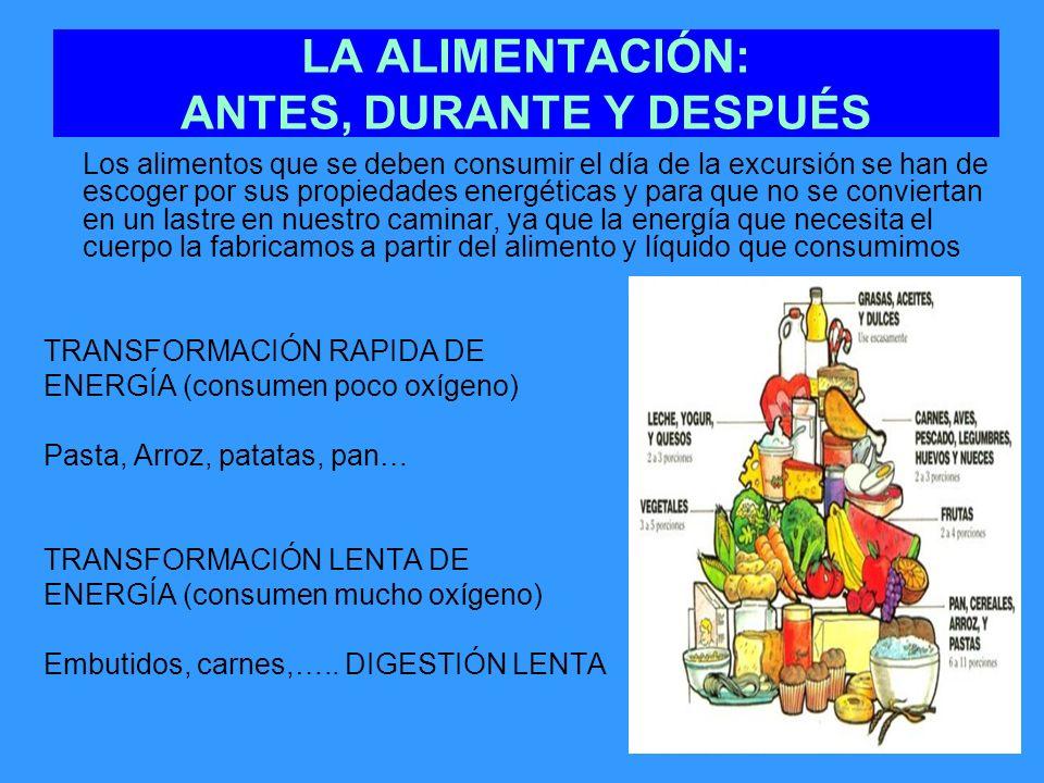 LA ALIMENTACIÓN: ANTES, DURANTE Y DESPUÉS Los alimentos que se deben consumir el día de la excursión se han de escoger por sus propiedades energéticas