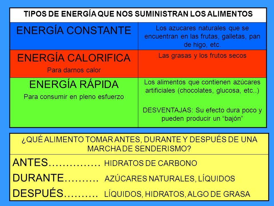 TIPOS DE ENERGÍA QUE NOS SUMINISTRAN LOS ALIMENTOS ENERGÍA CONSTANTE Los azucares naturales que se encuentran en las frutas, galletas, pan de higo, et