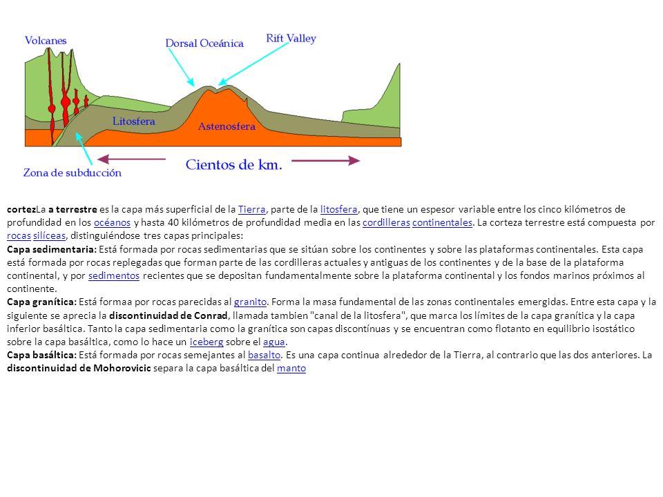 Distinguimos dos tipos de corteza, la corteza continental y la corteza oceánica.