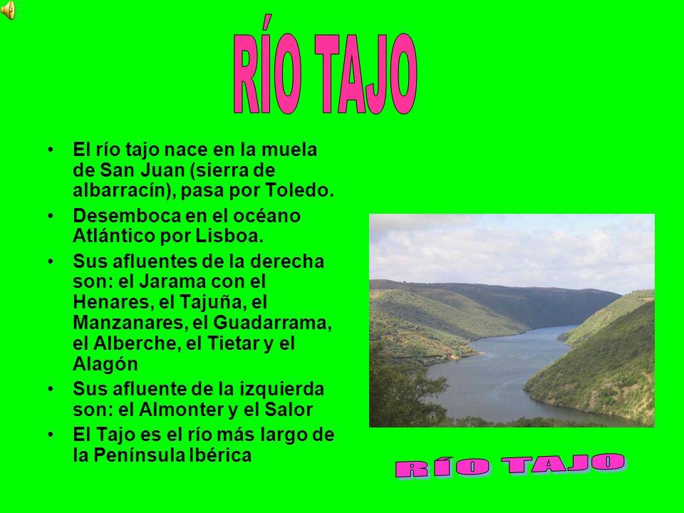 El río tajo nace en la muela de San Juan (sierra de albarracín), pasa por Toledo. Desemboca en el océano Atlántico por Lisboa. Sus afluentes de la der