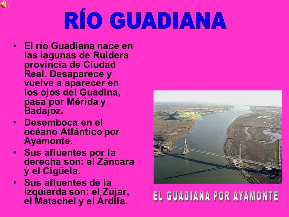 El río Guadiana nace en las lagunas de Ruidera provincia de Ciudad Real. Desaparece y vuelve a aparecer en los ojos del Guadina, pasa por Mérida y Bad