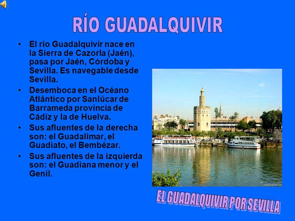 El río Guadalquivir nace en la Sierra de Cazorla (Jaén), pasa por Jaén, Córdoba y Sevilla. Es navegable desde Sevilla. Desemboca en el Océano Atlántic