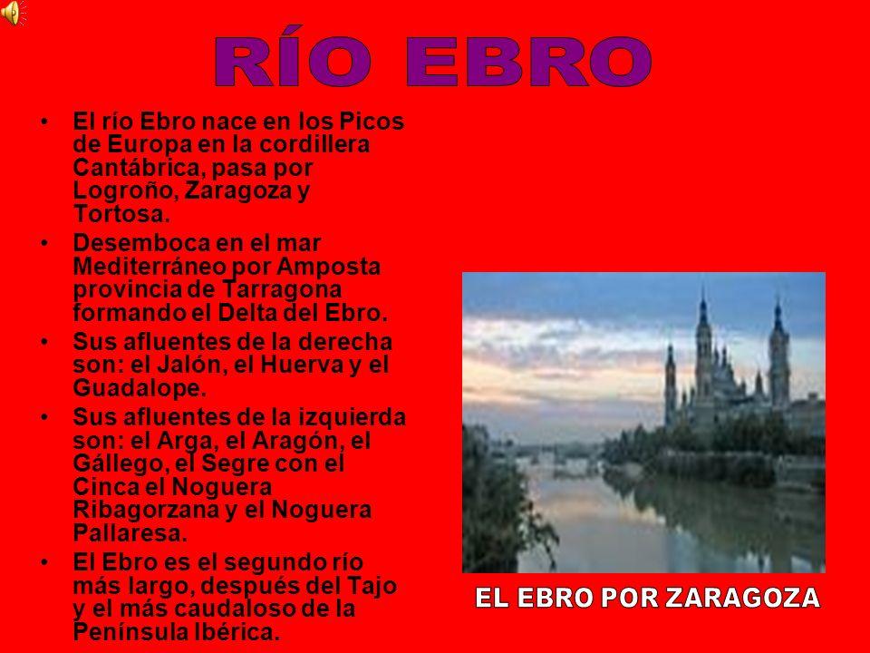 El río Ebro nace en los Picos de Europa en la cordillera Cantábrica, pasa por Logroño, Zaragoza y Tortosa. Desemboca en el mar Mediterráneo por Ampost