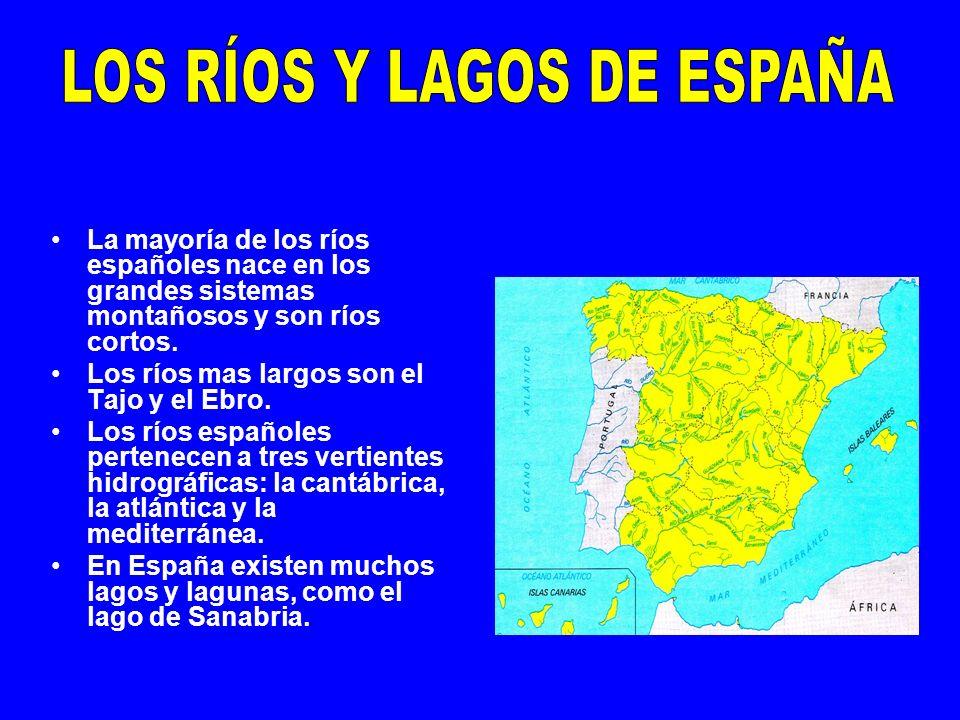La mayoría de los ríos españoles nace en los grandes sistemas montañosos y son ríos cortos. Los ríos mas largos son el Tajo y el Ebro. Los ríos españo