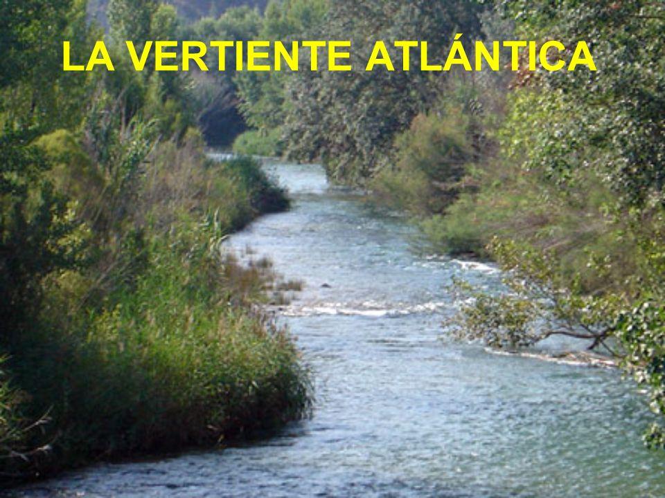 La vertiente mediterránea comprende los ríos que desembocan en el mar mediterráneo.