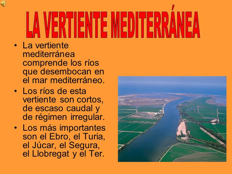 La vertiente mediterránea comprende los ríos que desembocan en el mar mediterráneo. Los ríos de esta vertiente son cortos, de escaso caudal y de régim