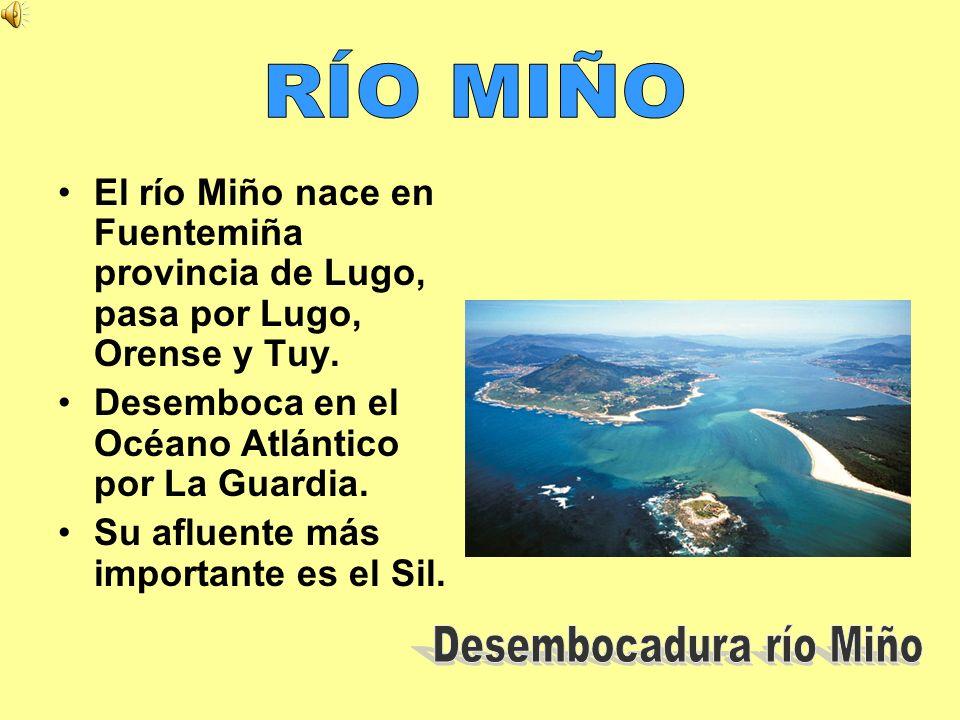 El río Miño nace en Fuentemiña provincia de Lugo, pasa por Lugo, Orense y Tuy. Desemboca en el Océano Atlántico por La Guardia. Su afluente más import