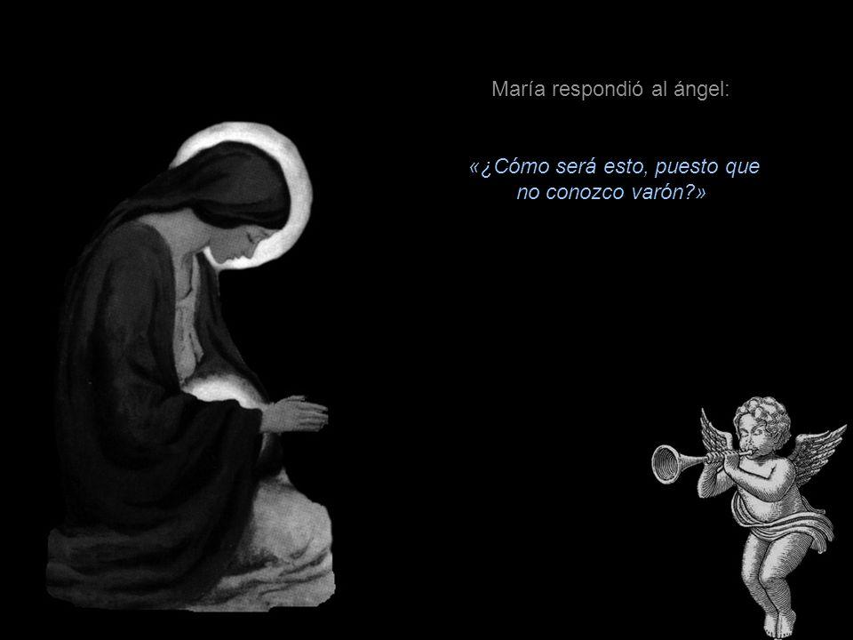 El ángel le dijo: «Alégrate, llena de gracia, el Señor está contigo.» Luego añadió: «No temas, María, porque has hallado gracia delante de Dios; vas a