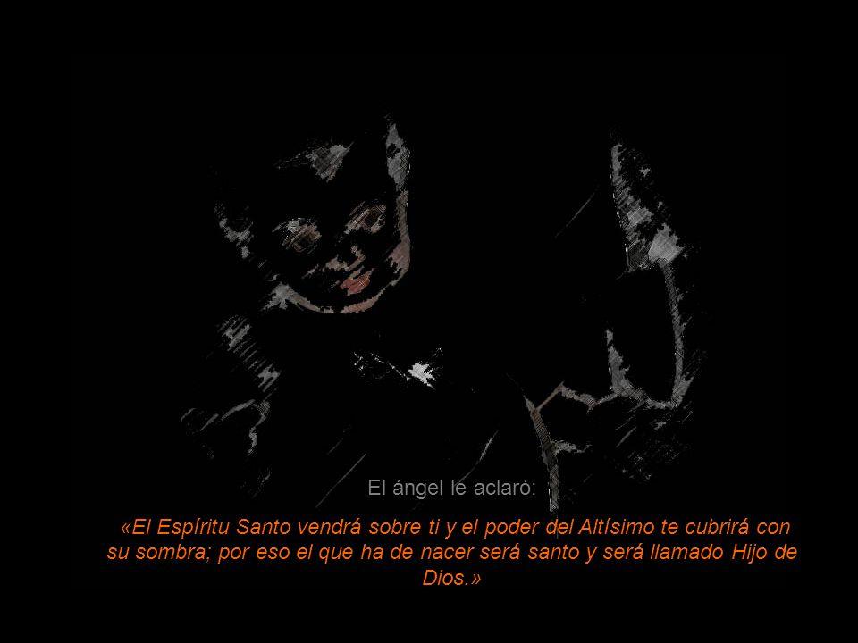 María respondió al ángel: «¿Cómo será esto, puesto que no conozco varón?»