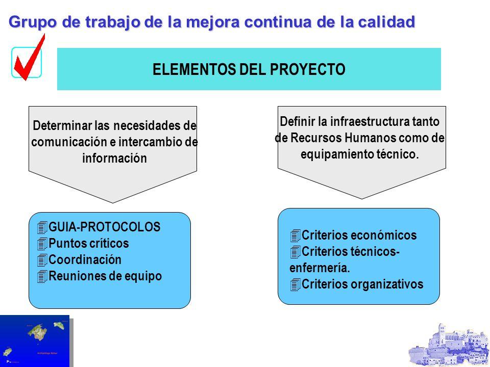 ELEMENTOS DEL PROYECTO Determinar las necesidades de comunicación e intercambio de información Definir la infraestructura tanto de Recursos Humanos co