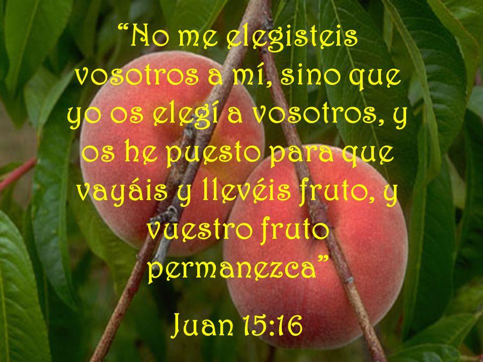 No me elegisteis vosotros a mí, sino que yo os elegí a vosotros, y os he puesto para que vayáis y llevéis fruto, y vuestro fruto permanezca Juan 15:16