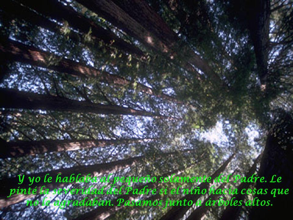 A veces parábamos para descansar, recostándonos en los árboles del Padre, y dejábamos que su aire refrescara nuestra frente, y no hablábamos.