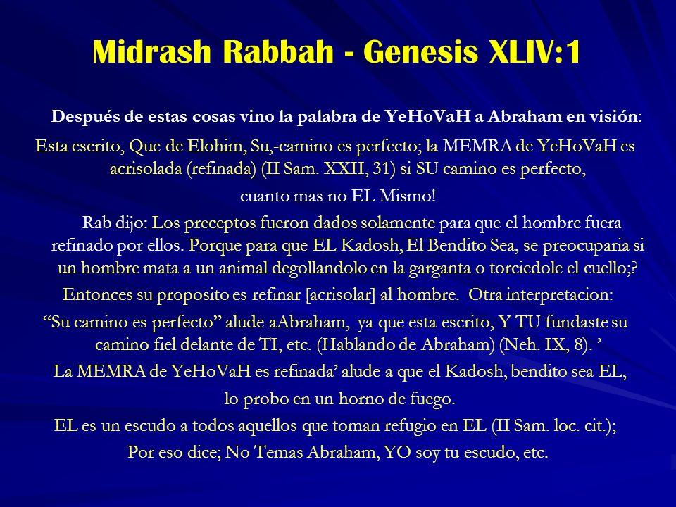 Midrash Rabbah - Genesis XLIV:1 Después de estas cosas vino la palabra de YeHoVaH a Abraham en visión: Esta escrito, Que de Elohim, Su,-camino es perfecto; la MEMRA de YeHoVaH es acrisolada (refinada) (II Sam.