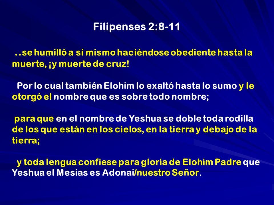 Filipenses 2:8-11.. se humilló a sí mismo haciéndose obediente hasta la muerte, ¡y muerte de cruz! Por lo cual también Elohim lo exaltó hasta lo sumo