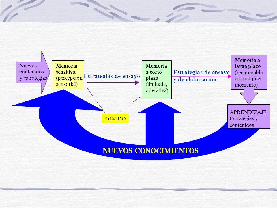 ¿Qué significa para la evaluación? Conductas observables Procesos de mediano nivel Procesos de alto nivel