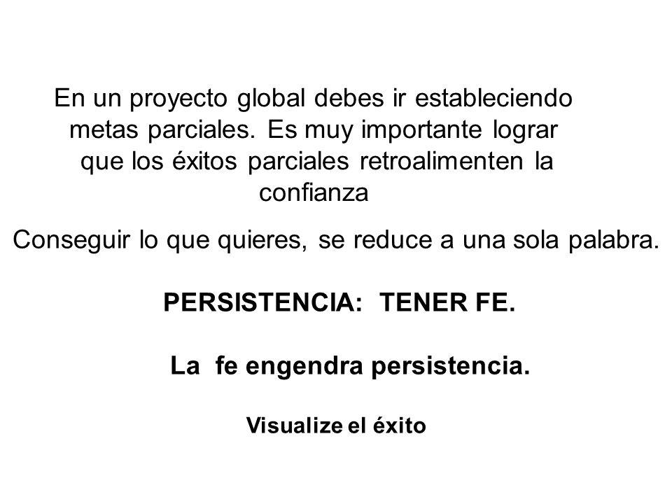 En un proyecto global debes ir estableciendo metas parciales.