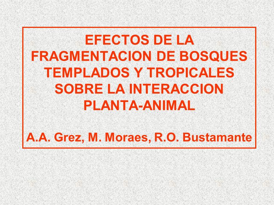 EFECTOS DE LA FRAGMENTACION DE BOSQUES TEMPLADOS Y TROPICALES SOBRE LA INTERACCION PLANTA-ANIMAL A.A.